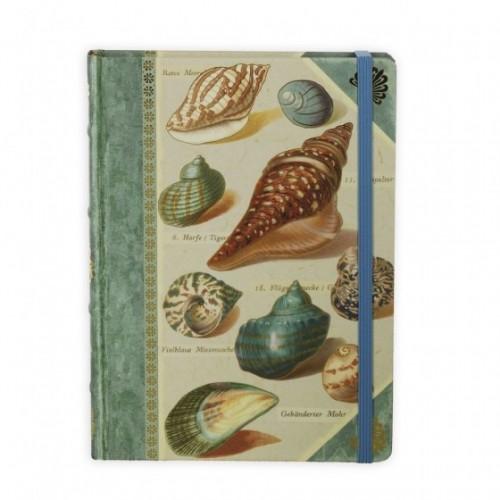 Книга для записей Shells